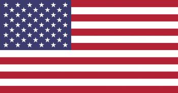 미국의 국기.png